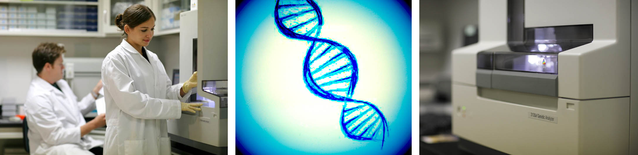 GenHunter DNA Sequencing Service images